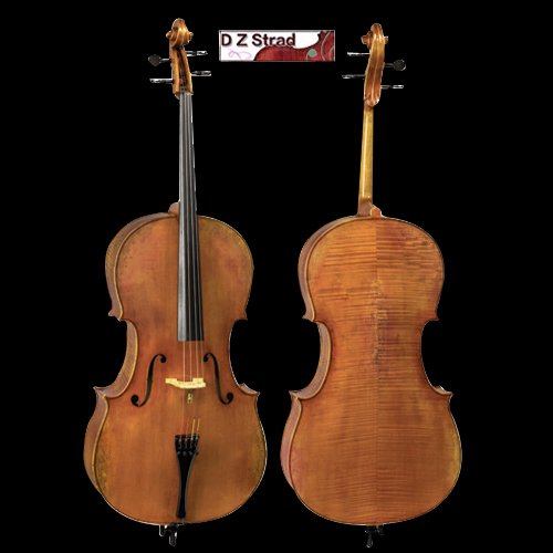 D Z Strad Model 900 handmade 4/4 Cello (4/4 - Size)