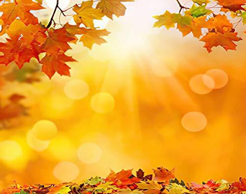 Y·JIANG Pintura por números rojo otoño arce hojas caídas hoja amarilla naturaleza DIY lienzo acrílico pintura al óleo por números para adultos niños decoración de la pared del hogar, 40,6 x 40,6 cm