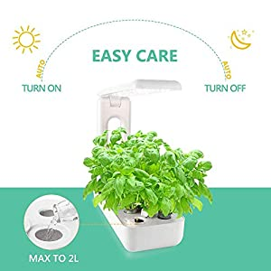 VegeBox Sprout LED with Gourmet Herb Seed Pod Kit, Indoor Hydroponics Growing System with Herb Seed Pod Kit (Kitchen Box, White)