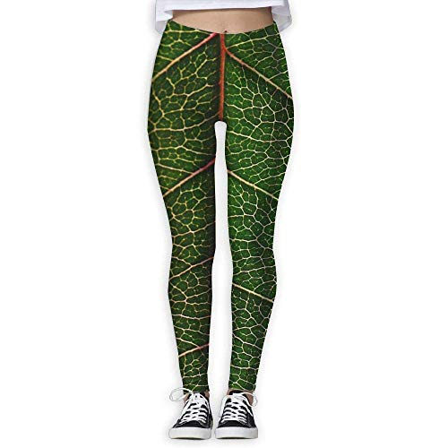 Ewtretr Yoga Pilates Hosen Fitnesshose für Damen, Green Leaf Texture Veins Printed Leggings Full-Length Yoga Workout Leggings Pants