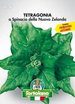 Sementi orticole di qualità l'ortolano in busta termosaldata (160 varietà) (TETRAGONIA O SPINACIO DELLA NUOVA ZELANDA)