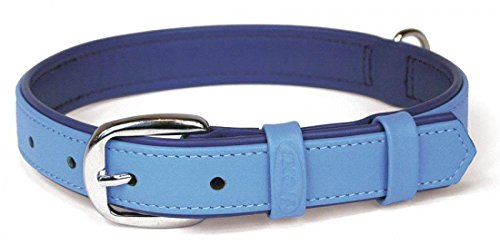 Flexi International Flexi Summertime Halsband