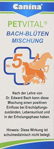 Canina Bach-Blüten No. 5, 1er Pack (1 x 10 g)