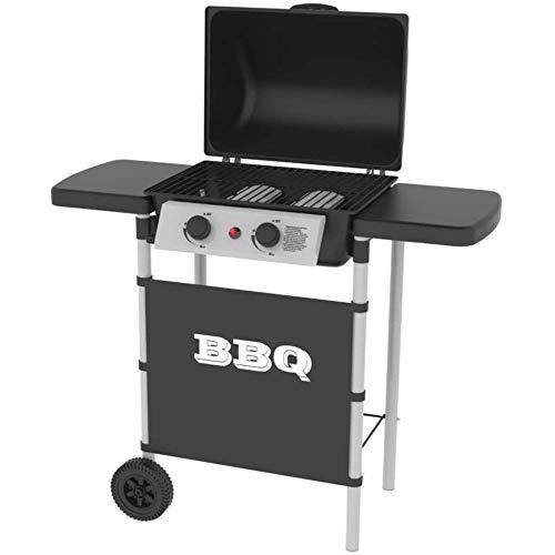 Silver Style 11568 Barbecue à gaz 2 brûleurs INOX