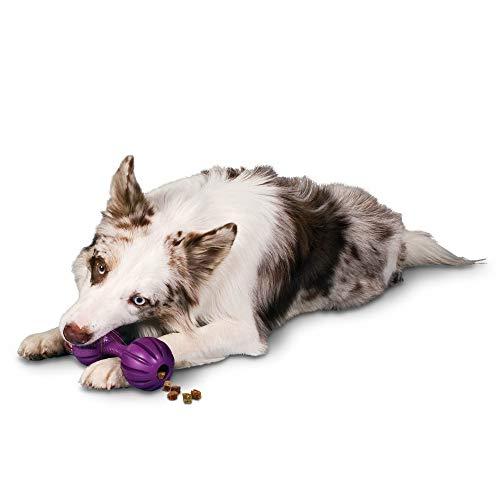 PetSafe Busy Buddy Waggle Treat Dispensing Dog Toy – Small, Medium/Large,Purple