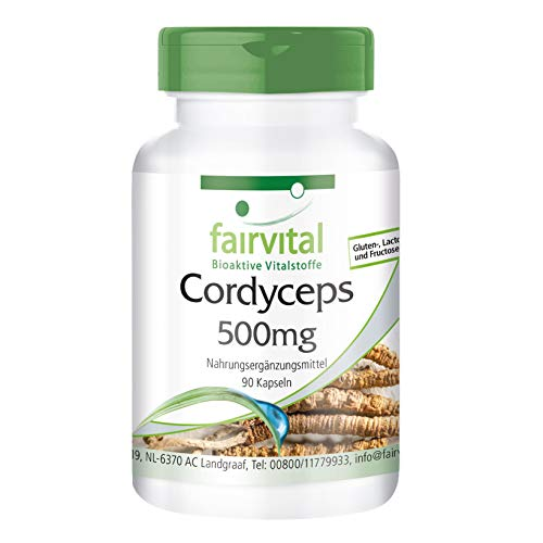 Cordyceps 500mg - per 1 mese - VEGAN - ad alto dosaggio - 90 capsule - Cordyceps Sinensis - fungo del bruco
