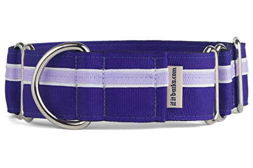 If It Barks - 1.5' Martingale Collar for Dogs - Adjustable - Nylon - Strong and Comfy - Ideal for Training - Made in USA - Medium, Grape Crush