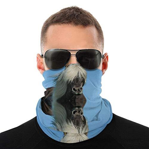 BFDX Island Pferd Stirnband Bandanas Magic Headwrap Magic Face Schal Sport Kopfbedeckung Magic Schal für Outdoor Yoga Wandern Reiten Motorradfahren