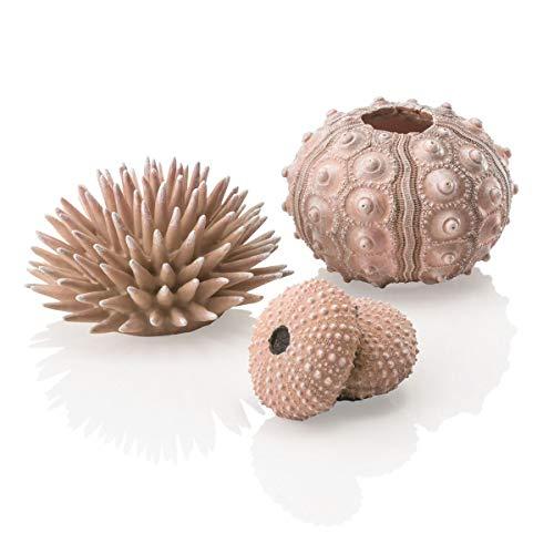 biOrb Sea urchins Set, Natural