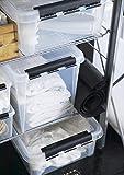 Orthex 3493070 Clipbox Smart Store Classic 16/25 L Volumen, transparent - 3