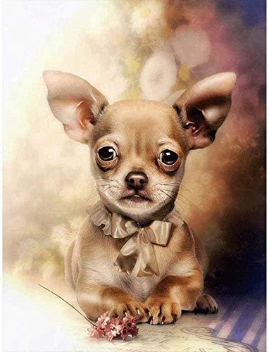 Kits de pintura de diamantes Pintura por números para adultos 5D Diamante Arte Imagen de diamante DIY Personalizado Hacer animales Perro para decoración de pared del hogar por 40x50cm