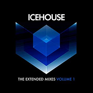 The Extended Mixes Vol. 1