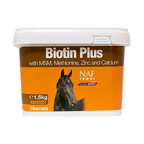 Biotine 1.5 KG