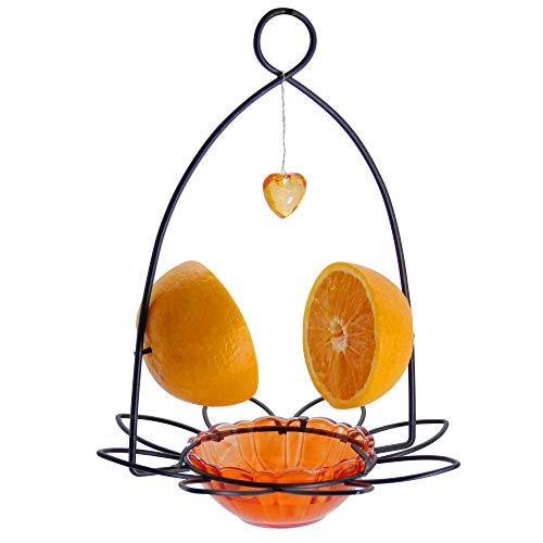 Best oriole feeder - FORUP Oriole Bird Feeder, Orange Fruit Oriole Feeder