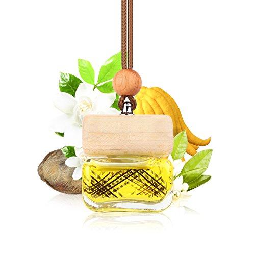 L J Auto Lufterfrischer, Autoduft, original französisches Parfumöl hergestellt bei Mane®, Auto Zubehör, Auto Duft, Leichter Duft fürs Auto, Hängefläschchen im Fahrzeug, Raumduft, 10ml (G-1253)
