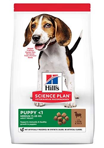 Hill's Canine Puppy Lamb & Rice Comida para Perros - 12000 gr