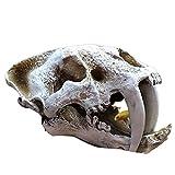 Acuario Peces Tanque Dinosaurio Cabeza Cráneo Ornamento Resina Artesanías Halloween Props Ciencia Popular