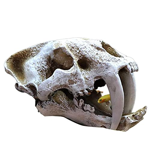 Aquarium Fish Tank Dinosaur Head Skull Ornament Resin Crafts Halloween Props Popular Science Tools