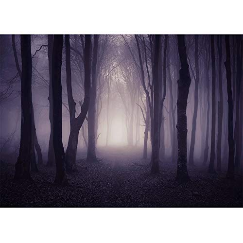Allenjoy 7x5ft Misty Dark Forest Woods Halloween Backdrop for Photography Gloomy Grove Mystery Background for Portrait Magic Witch Wizard Sorcerer Ghost Themed Party Banner Decors Photo Props