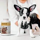 MaxxiCalm, Beruhigungshilfe für Hunde, 120 Tabletten mit Lebergeschmack - 8