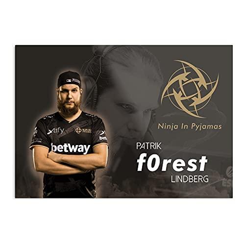 Nip Forest – Impresión artística moderna diseño I póster – Decoración sin marco para la casa – Personalizable.