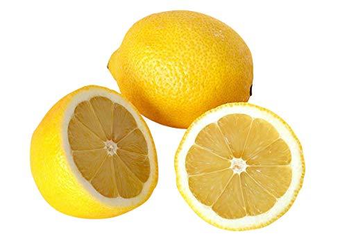 Zitronen Samen 5 stk (Zitrusbaum) + Anpflanzanleitung für Anfänger