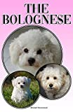 The Bolognese: A Complete and Comprehensive Beginners Guide to: Buying, Owning, Health, Grooming, Training, Obedience, Understanding and Caring for Your Bolognese (English Edition)