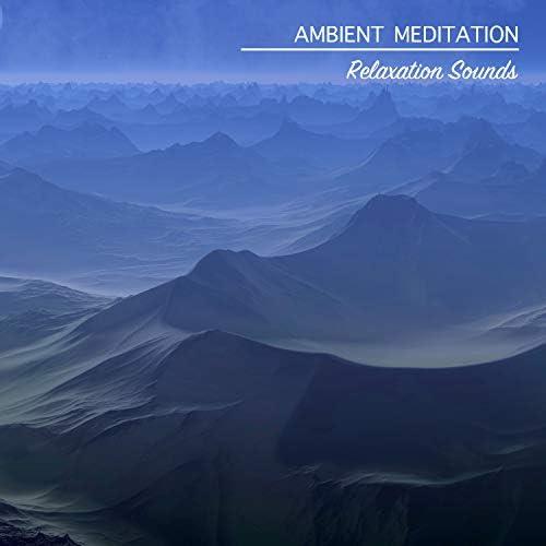 Zen Music Garden, Meditation, Relaxing Mindfulness Meditation Relaxation Maestro