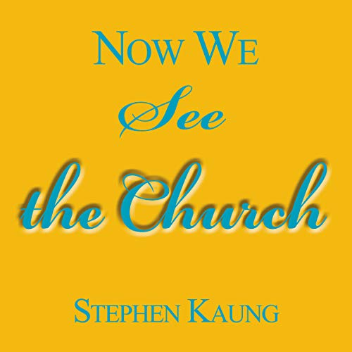 Now We See the Church audiobook cover art