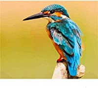 DMFNGJSD 数字油絵 フレーム付き 、数字キット塗り絵 手塗り DIY絵-カワセミ動物-デジタル油絵 40x50 cm