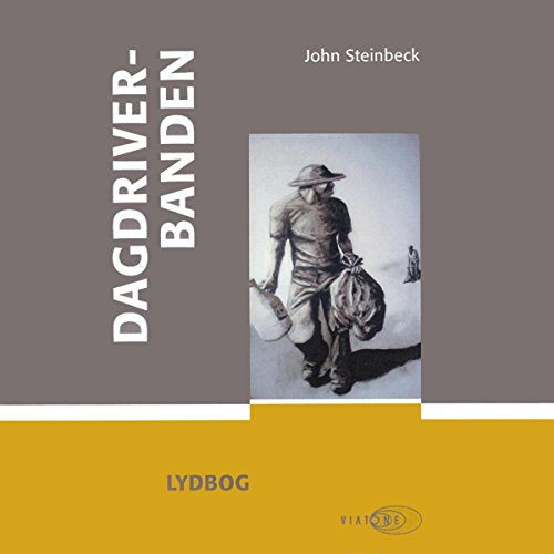 Dagdriverbanden audiobook cover art