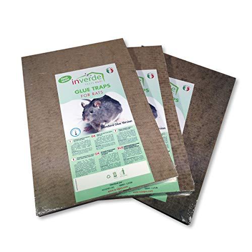 Piastre di colla in legno anti topi anti ratti-Set da 3x 2(ossia 6pezzi)
