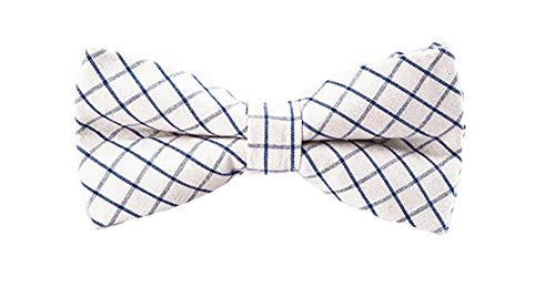 SORGENFREI - Hochwertige Herren Fliege - 100% Baumwolle, bereits gebunden, verschiedene Designs - verstellbar (C17_Weiß/Blau)