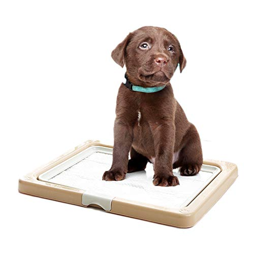 ALUCE Pee Pad Holder - Puppy Training Pads - Best Portable Potty Trainer - Indoor Dog Potty - Puppy Essentials - Dog Training Holder - Puppy Pad Holder - Pet Pee Holder