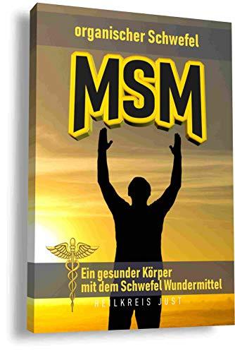 MSM organischer Schwefel Ein gesunder Köper mit dem Schwefel Wundermittel: Das Handbuch für das Phänomen MSM Schwefelpulver