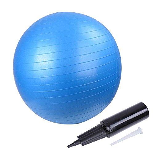 バランスボール 55cm/65cm エクササイズ ヨガボール アンチバースト仕様 ポンプ付 耐荷重200kg (ブルー (直径55cm))