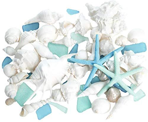 Real Mixed Beach Seashells with Blue & Green Starfish & Aqua and Blue Sea Glass   White Decorative Sea Shell Décor & Blue Seaglass Pieces   Seashell Wedding   Plus Free Nautical eBook by Joseph Rains