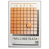 takestop Blocco Carta MILLIMETRATA A4 Album PICARTA FABRIANESE Foglio 21x29,7CM 10 Fogli 80GR INGEGNERIA Disegno Scuola