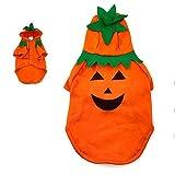 Disfraz Perro Halloween Calabaza (L) (+ Tallas) Accesorio Mascotas