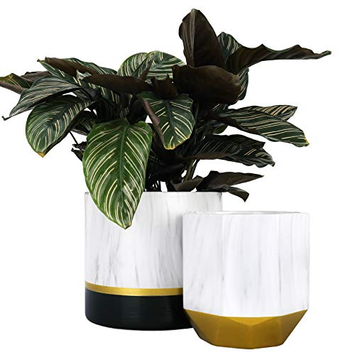 LA JOLIE MUSE White Ceramic Flower Pot Garden Planters 6.7 + 5.4 Inch Indoor, Plant Containers in a Marble Ink Pattern with Bronze and Black Detailing