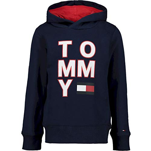 Tommy Hilfiger Jongen Truien