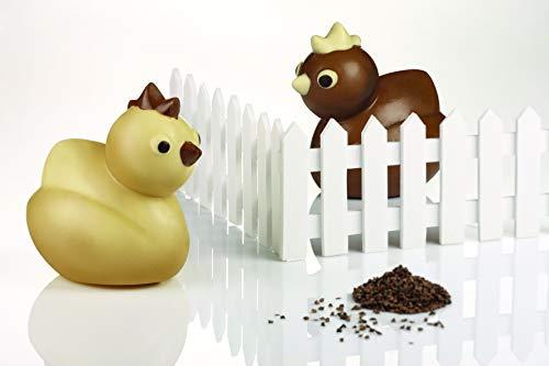 mallard ferrière Stampo Cioccolato Pulcino