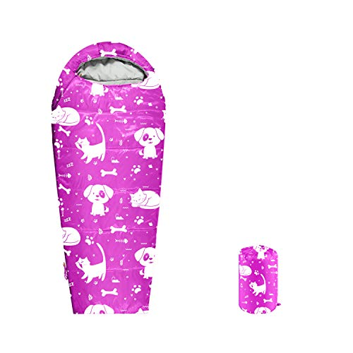 ANJ Outdoors Youth and Kids Sleeping Bag | 4 Season Indoor/Outdoor Boys and Girls Sleeping Bag | Mummy Style, Light Weight Sleeping Bags for Kids - Best Friends Theme (Pink Kids Single)