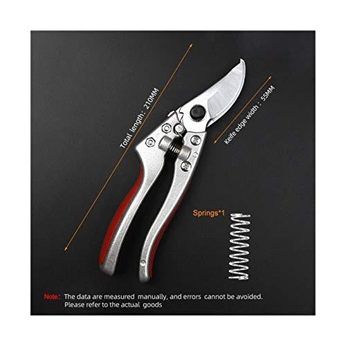 Youpin Pruning Shear Garden Tools SK5 Steel Blades for Fruit Tree Pruning Shears Bonsai Pruners Garden Scissors (Color : Silver)
