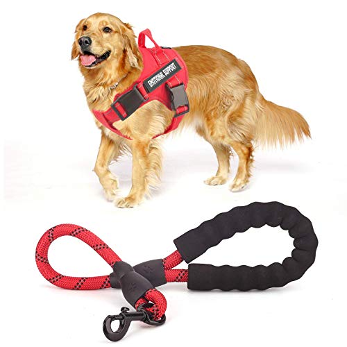 voopet Service Dog Harness (Red,Medium) and 2 Feet Dog Leash (Red) with 4pcs Removeable Tags