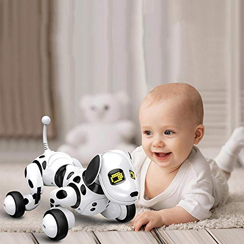 Kobwa, robot intelligent avec...