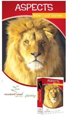 Aspekte Bibel Aktivität und Ressourcen Book Plus Card Games Pack