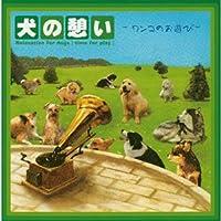 犬の憩い-ワンコのお遊び-