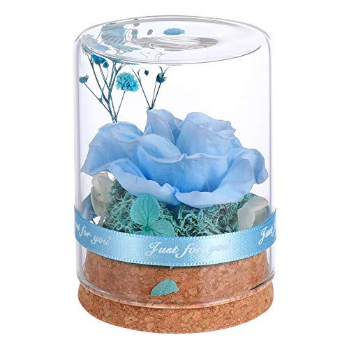 Cabilock Blue Forever Flowers Real Eternal Roses Preserved Flowers Floral Arrangement for Girlfriend Wife Mom Women Valentines Day Birthday Anniversary Wedding