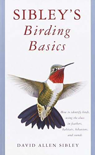 Sibley's Birding Basics: How to Identify Birds, Using the Clues in Feathers, Habitats, Behaviors, and Sounds (Sibley Guides)